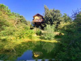 Awen Tree House c/o Casale La Bandita