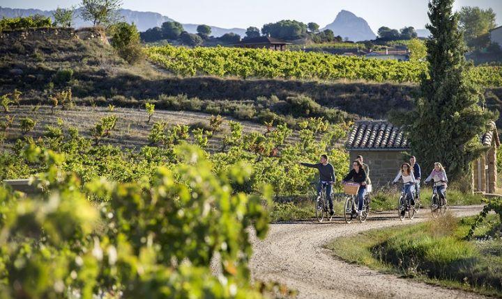 Paseo en bicicleta eléctrica entre viñedos de Rioja Alavesa