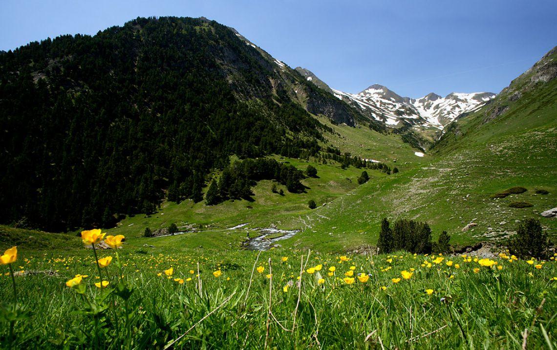 Val d 39 aran biosphere responsible tourism biosphere - Inmobiliaria valle de aran ...
